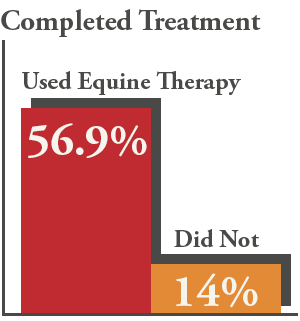 Equine Therapy Use in Treatment Stats