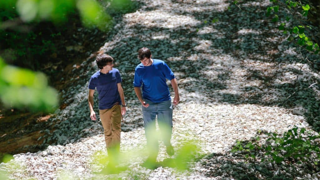 two men in blue shirts walking in nature