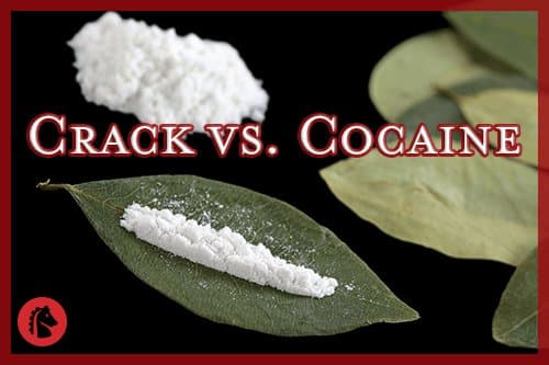 Differences Between Crack and Cocaine (& Myths) - Oxford